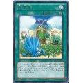 増草剤ノーパラ(AT16-JP003)【魔法】