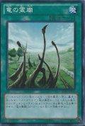 竜の霊廟/レア(DP17-JP031)【魔法】