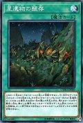 星遺物の醒存/ノーマル(CYHO-JP060)【魔法】