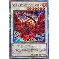 ブラックローズドラゴン/20thシークレット(20CP-JPS05)【シンクロ】