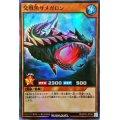 交戦魚サメガロン【スーパー】{RDKP01-JP036}《RDモンスター》