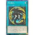 ☆アジア☆神の進化【シークレット】{アジア21PP-JP003}《魔法》