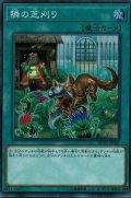 隣の芝刈り/スーパー(RC02-JP041)【魔法】