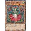 椿姫ティタニアル【ノーマルパラレル】{DBSS-JP041}《モンスター》
