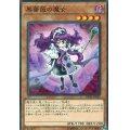 黒薔薇の魔女/ノーマル (DP21-JP030)【モンスター】