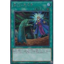 画像1: 墓穴の指名者/シークレット(RC03-JP040)【☆New☆魔法】
