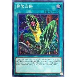 画像1: 捕食活動/スーパー(DP22-JP047)【魔法】