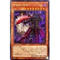 夢魔鏡の黒騎士ルペウス【レア】{WPP1-JP021}《モンスター》