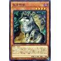 孤高除獣/ノーマル(SAST-JP030)【モンスター】